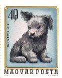 pumi-pup-stamp.jpg